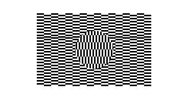 illusion8.jpg